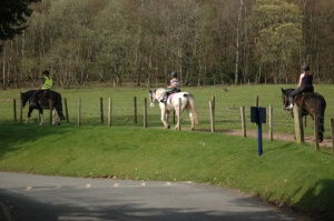 Horse Riding at Crieff Hydro Hotel