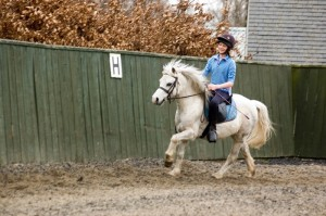 Crieff Hydro Riding Centre - Group Horse Riding In Perthshire