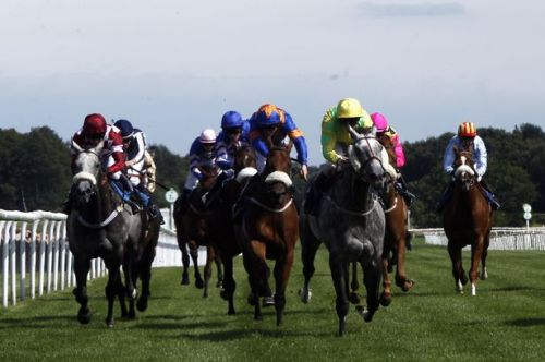 Horse-Racing-At-Racecourse