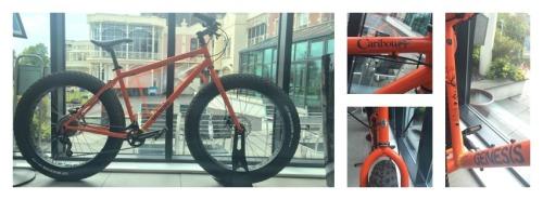 bikesCollage